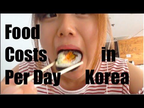 Food Cost Per Day | Seoul, Korea