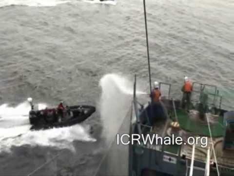 January 6, 2012 Gemini and Farley Attack Yushin Maru # 3 With Ropes, and Smoke Bombs