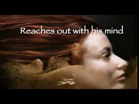 Dark Desire Christine Feehan Book Trailer