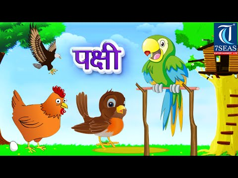 Types Of Birds In Marathi - Animation Video For Kids video
