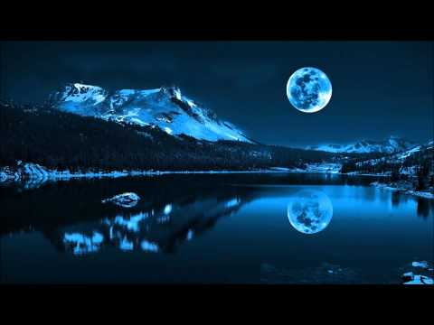 Anders Nilsen - Flowers On The Moon