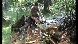 Ale e la stihl 880 part. 2.avi