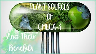 Plant Based Sources of Omega 3 Without Fish Oil | Nutrition