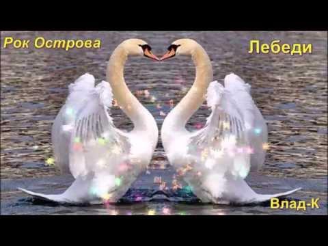 Рок Острова---- Лебеди...