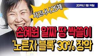 손혜원 목포 싹쓸이 '노른자 블록' 30% 장악! (진성호의 돌저격) / 신의한수 2019.01.19