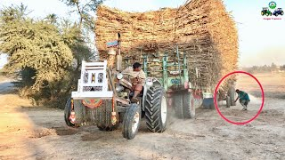 Tractor Fail | Ford & Belarus Fail to Pull out Heavy loaded Trailer 🔥🔥