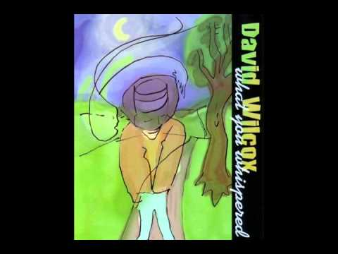 David Wilcox - Inside Of My Head