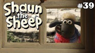 Shaun the Sheep   Salju dan Ski Snowed In