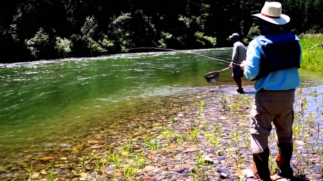 Fly fishing the south fork snake river idaho youtube for Idaho out of state fishing license
