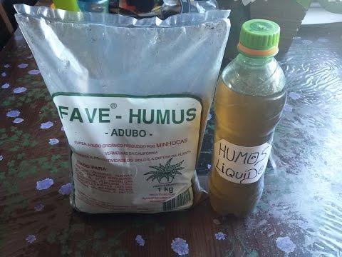 Como Fazer o Melhor Humos de Minhoca (Adubo Poderoso)