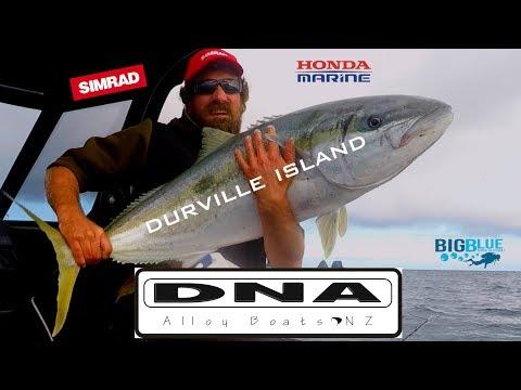 Josh James - Fishing New Zealand - Kingfish - Durville Island - The Kiwi Bushman