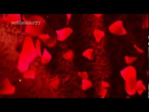 Marc Anthony - When I dream at night ( traducción a español...