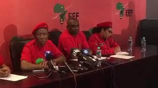 Malema says Grace Mugabe is a criminal