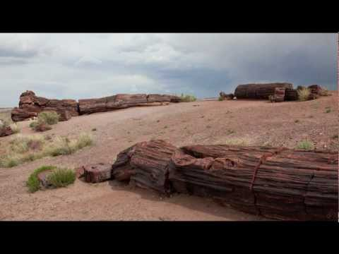 Stock Photos Of Petrified Forest National Park