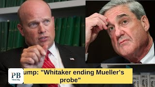 'He will do what's right': Trump signals Whitaker may end Mueller's Probe