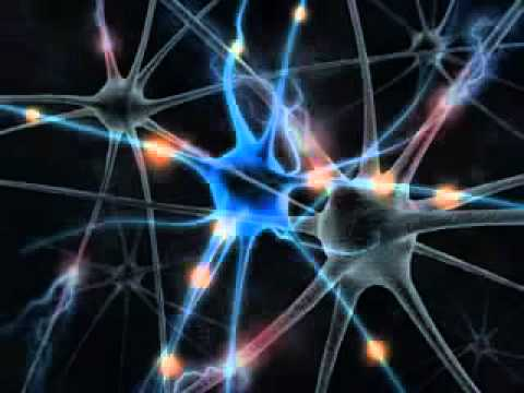 ПРОЙДИТЕ тест IQ БЕСПЛАТНО и без смс — проверка IQ