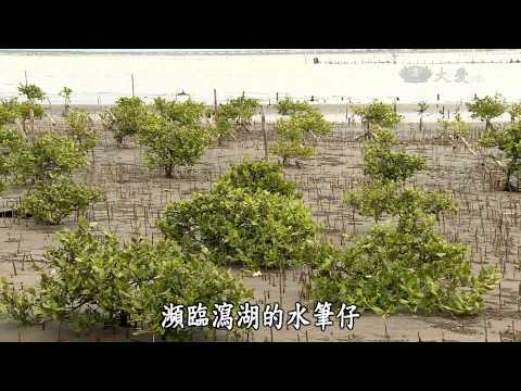 大愛-發現-20150711 失落的台灣八景