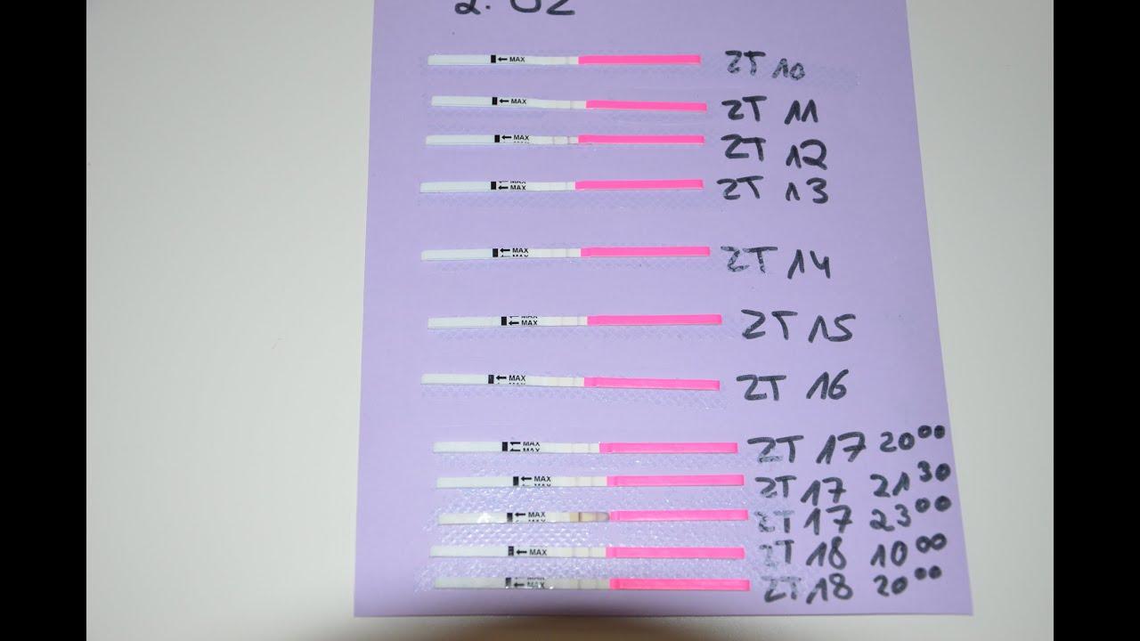 Ovulationstest positiv wann eisprung