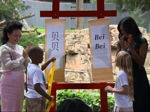 US, China First Ladies Unveil Baby Panda's Name