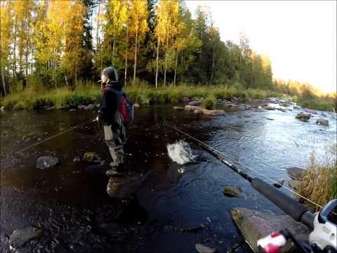Neljä päivää jokihauestusta, osa 1