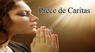 download lagu Prece De Caritas - Gotasdepaz Mensagens Edificantes gratis