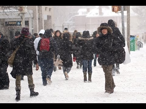 Winter Storm Hammers New York