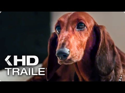 Watch Wiener-Dog Full Movie Online (2016)