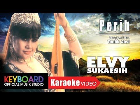Perih - Elvy Sukaesih
