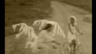 Александр Айвазов - Бабочка Луна