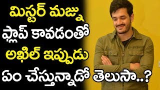 Allu Aravind Prepared All For Akhil Akkineni's First Movie Hit | Tollywoood News | Top Telugu Media