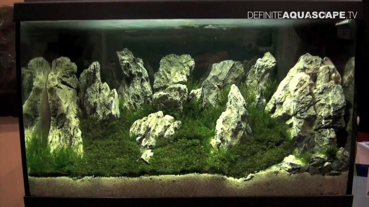 Aquascaping - Aquarium Ideas from PetFair 2013, Łódź ...