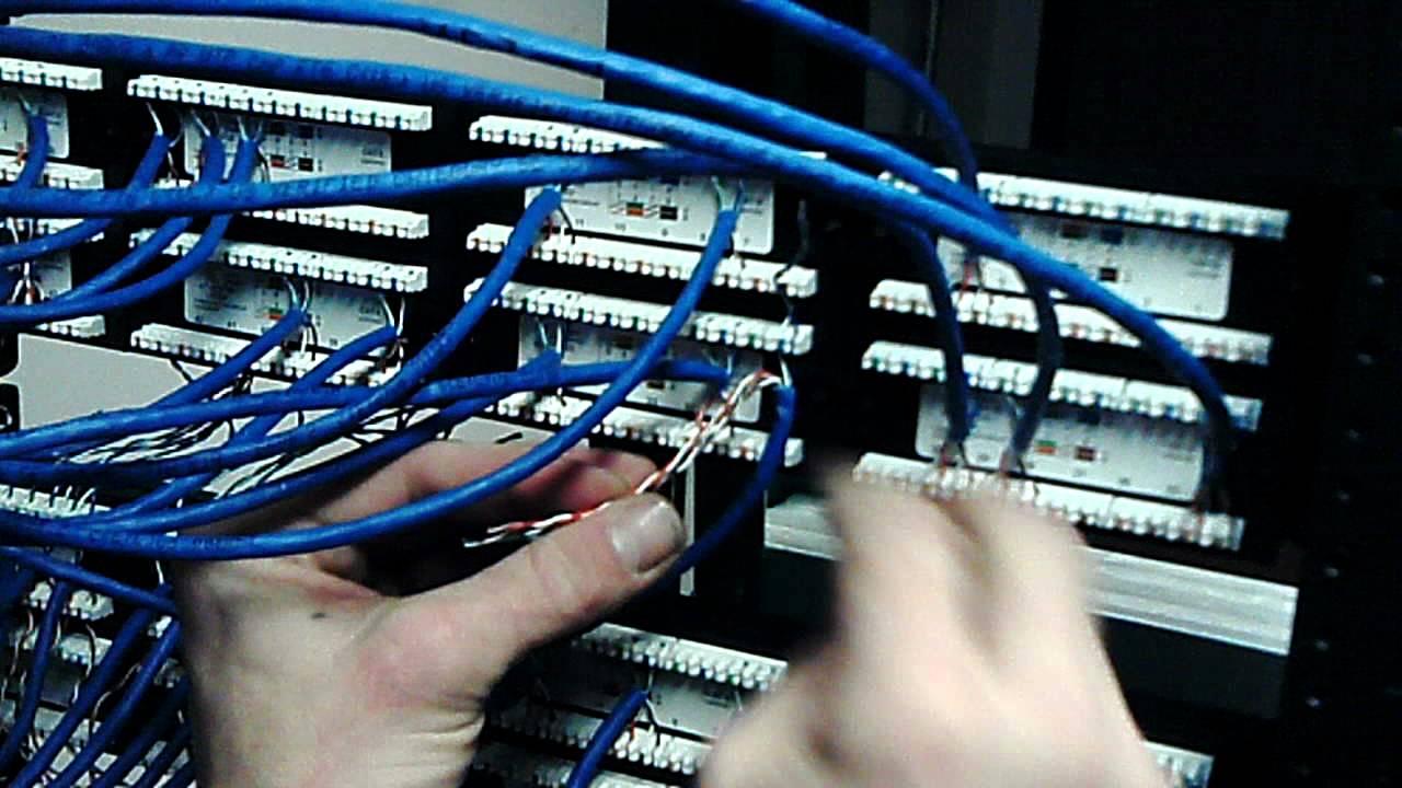 molex wiring diagram learn to terminate a cat 6 panel youtube  learn to terminate a cat 6 panel youtube