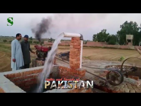 Sights and Sounds of a Punjabi Village