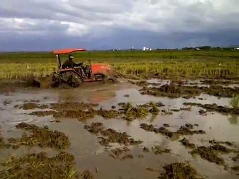 Daedong kioti tractor Video 1 - Trabajando By Anthony E. Tapia S. (Isaias Operador)