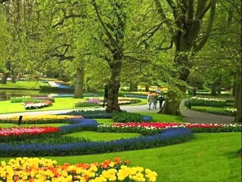 My Choice - La Paloma (Instrumental) - Keukenhof Gardens Amsterdam ...