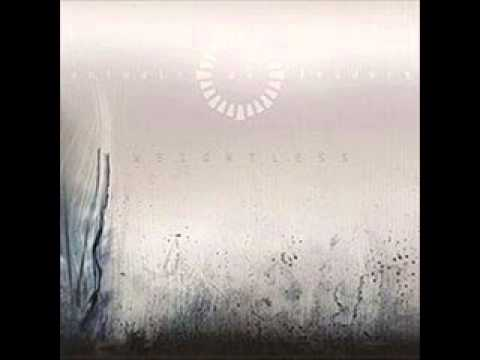 Animals As Leaders - Somnarium
