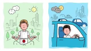 Sostenibilidad en el día a día | Sostenibilidad