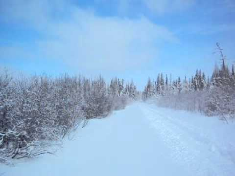 2011 Ski-doo Renegade X 1200 in fresh snow outside of Cochrane