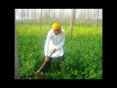 Poor People Real Life New Punjabi  Song 2011((())) Garib Di Zindagi ((())) Gurminder Guri