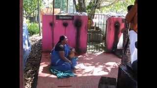 Pulluvathi singing at Thiru Iyni Shiva Temple, Maradu, Kerala, INDIA !
