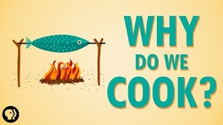 Why Do We Cook?