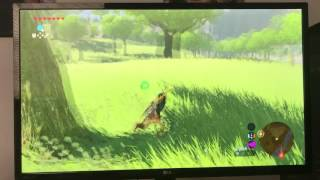 Nintendo Switch Breath of the Wild FPS Lag