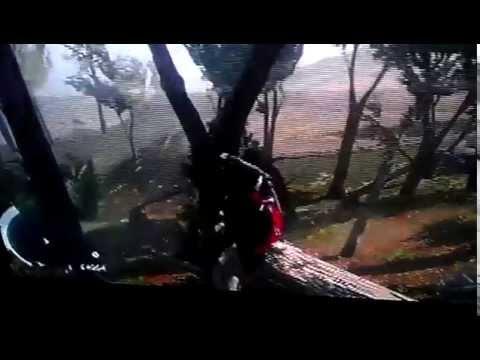Assassins Creed Origins / Sex Scene xD - YouTube