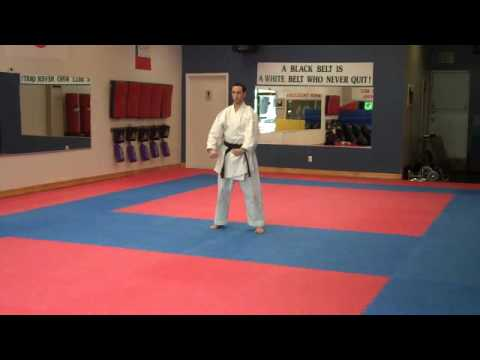 Warren Levi Karate - Heian Shodan Slow Motion video