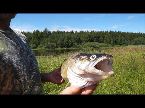лучший воблер для рыбинского водохранилища