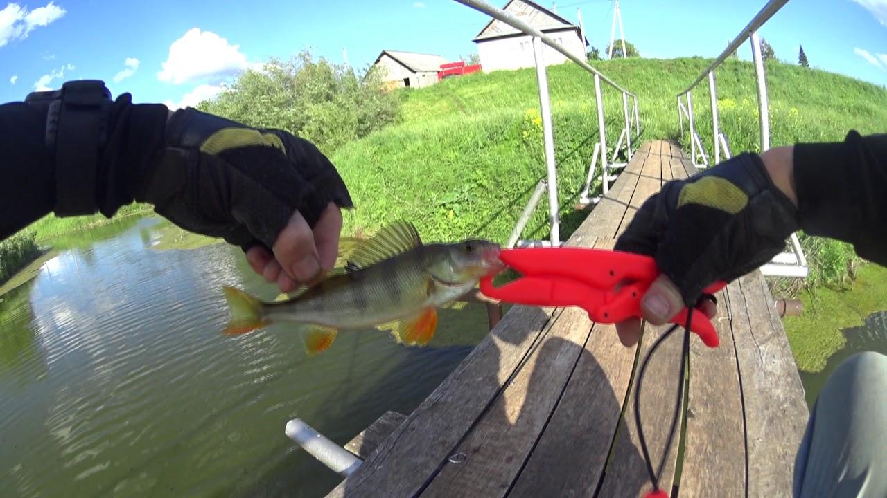 ловля окуня на малых озерах