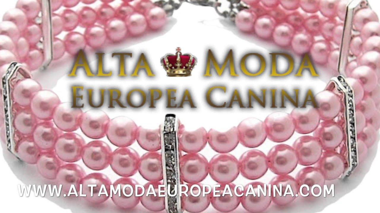 Collares para perros alta moda europea canina youtube for Collares para perros