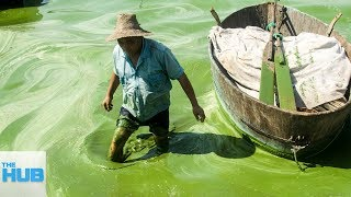 The Most Polluted Bodies of Water On Earth