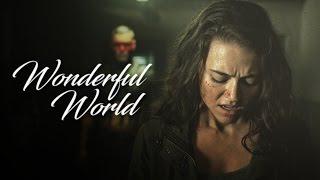 wonderful world [banshee]