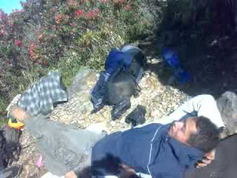 Korban Gunung Sindoro Pendakian Gunung Sindoro